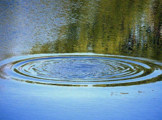 Жительница Прокопьевска утонула в пруду