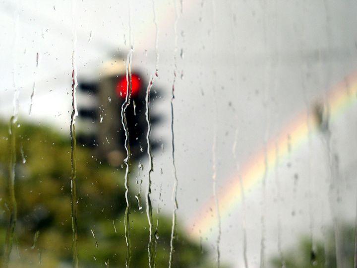 Синоптики: На этой неделе погода будет неустойчивой и прохладной