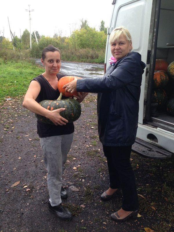 Садовод из Прокопьевска раздаёт выращенную тыкву нуждающимся