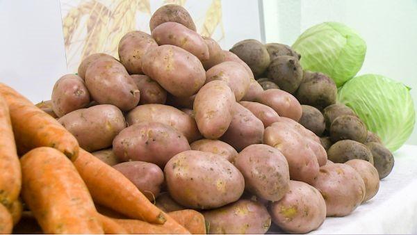 В Кузбассе расширен список получателей овощных наборов