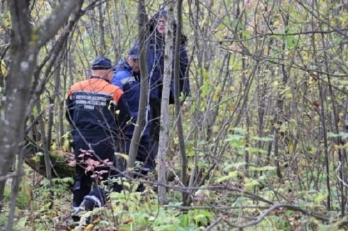 В Кузбассе грибники все чаще теряются в лесах