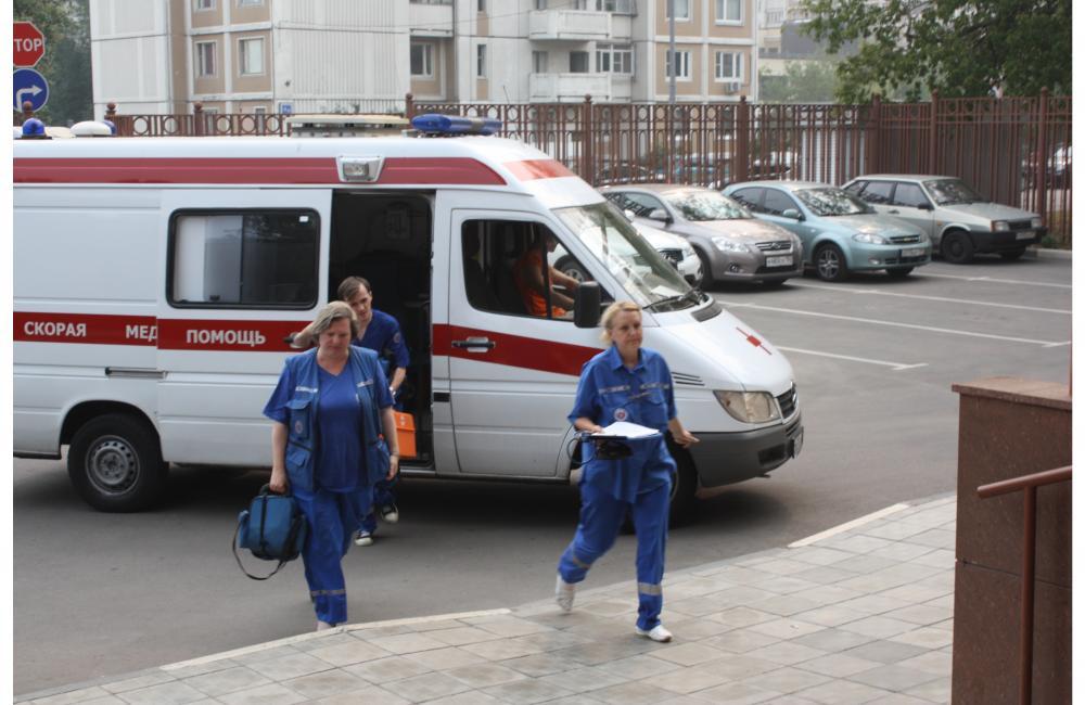 В Кузбассе собака серьезно травмировала ребенка