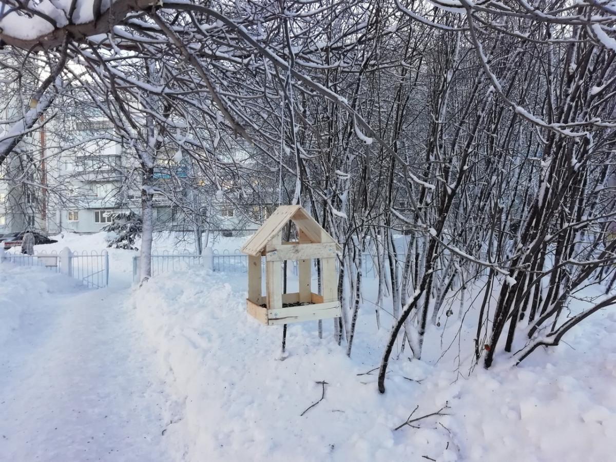 Синоптики предупреждают о серьезном похолодании