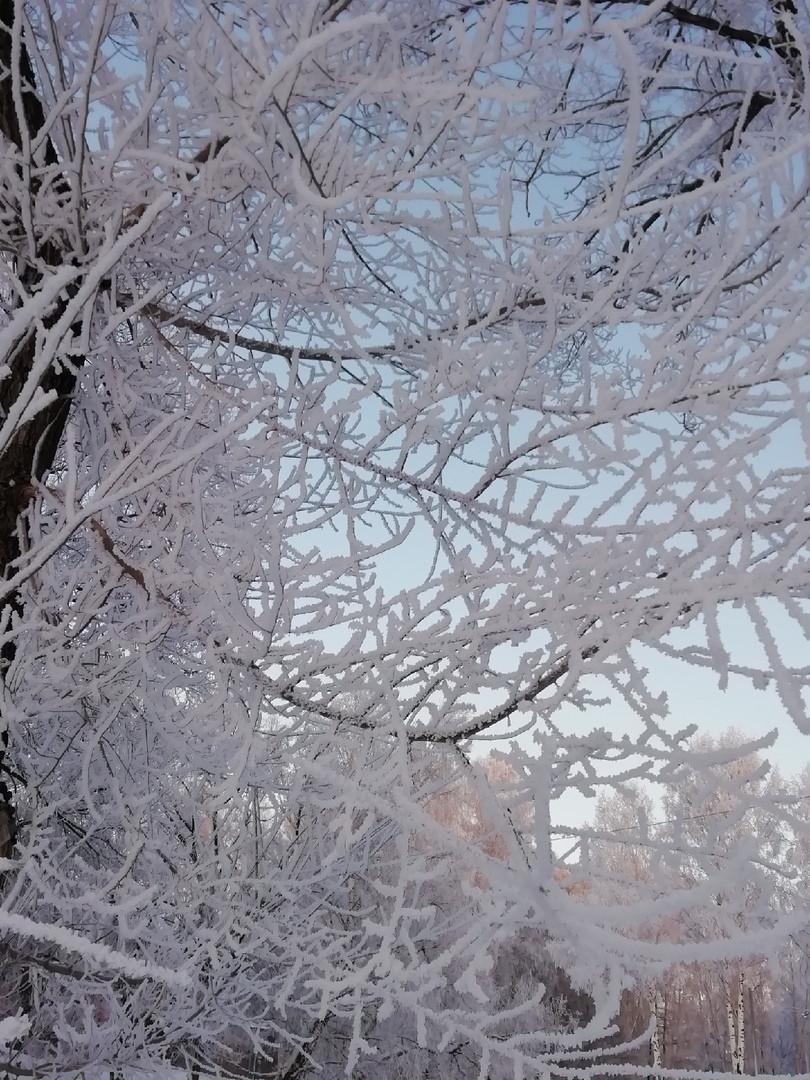 Синоптики предупреждают о похолодании: прогноз погоды на неделю