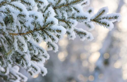 Похолодание продолжается: прогноз погоды на завтра