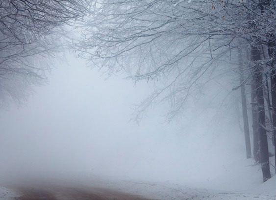 Синоптики: местами ожидается ухудшение видимости из-за туманов