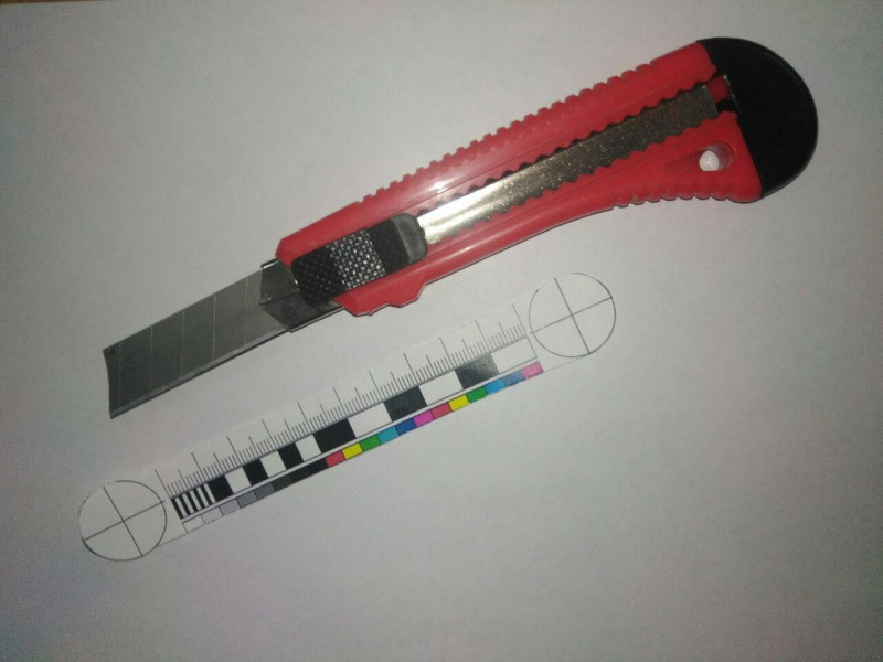 В Кузбассе задержан дебошир, угрожавший канцелярским ножом 5-летнему ребенку