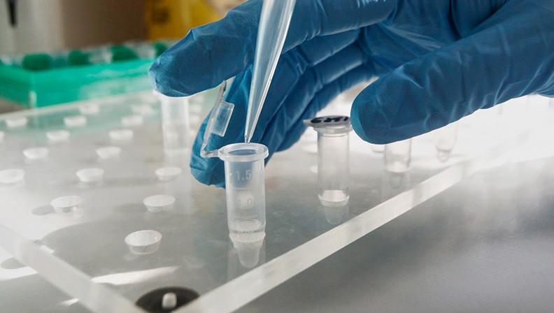 В Прокопьевске стали известны результаты первых тестов на коронавирус