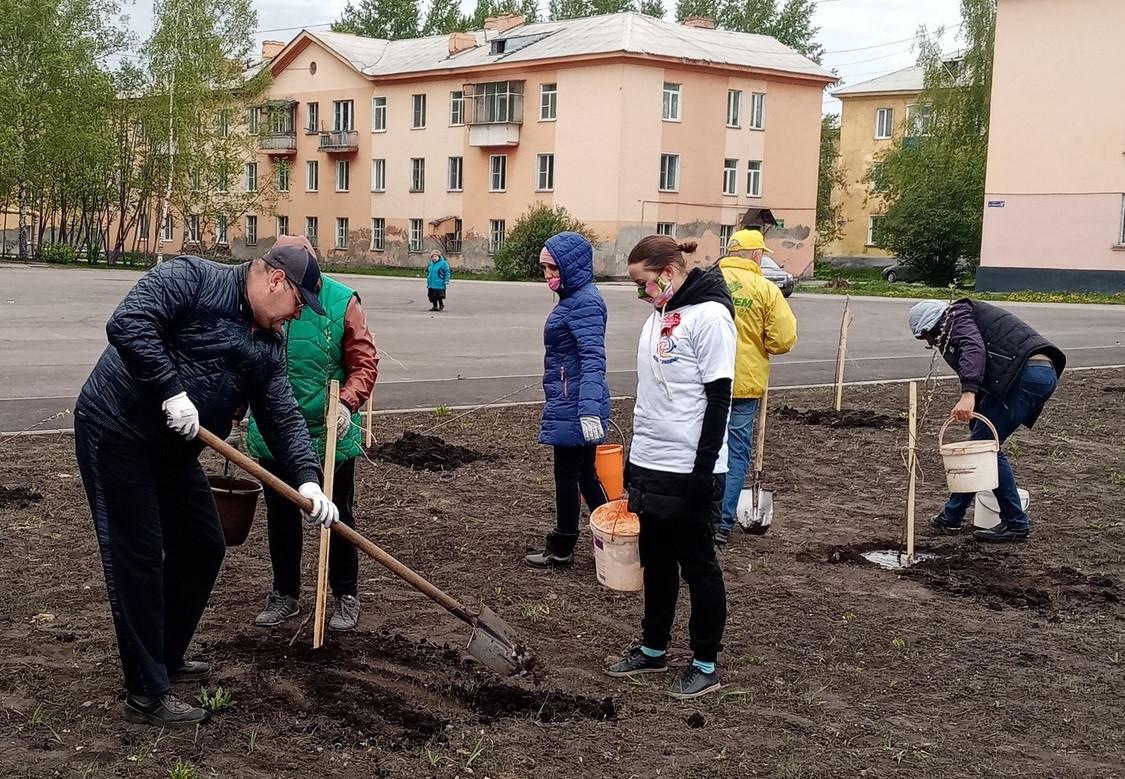 В сквере Прокопьевска высажены 75 яблонь и 11 хвойных деревьев