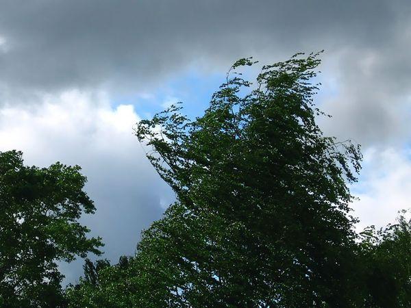 Синоптики прогнозируют дожди, грозы и град