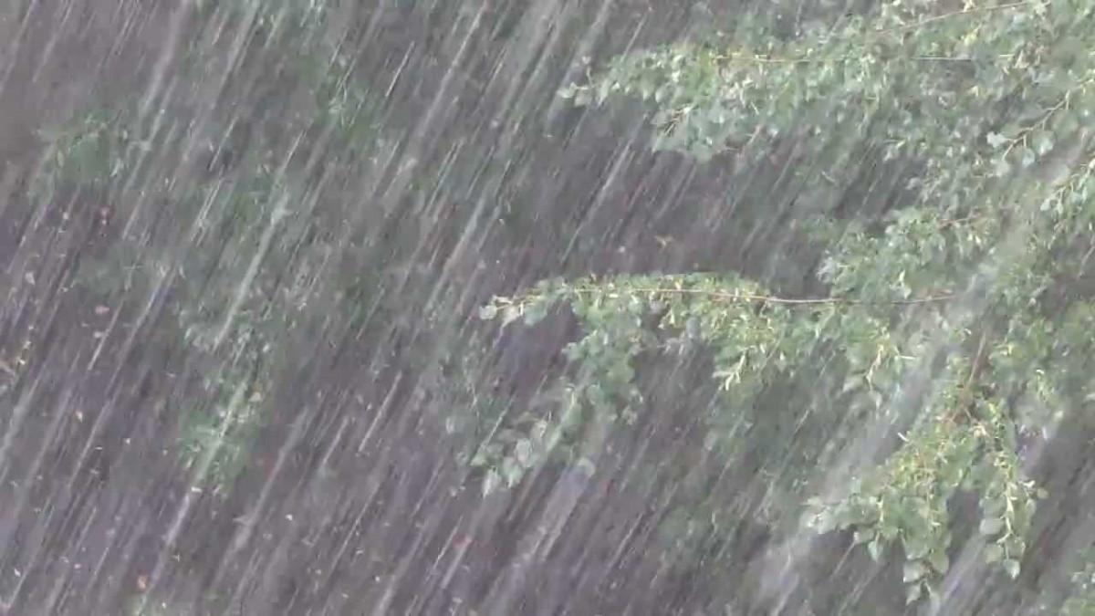 Синоптики предупреждают: ожидаются сильные дожди