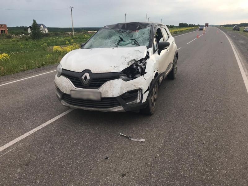В Прокопьевском районе водитель из-за мухи сбил насмерть велосипедиста: суд вынес приговор