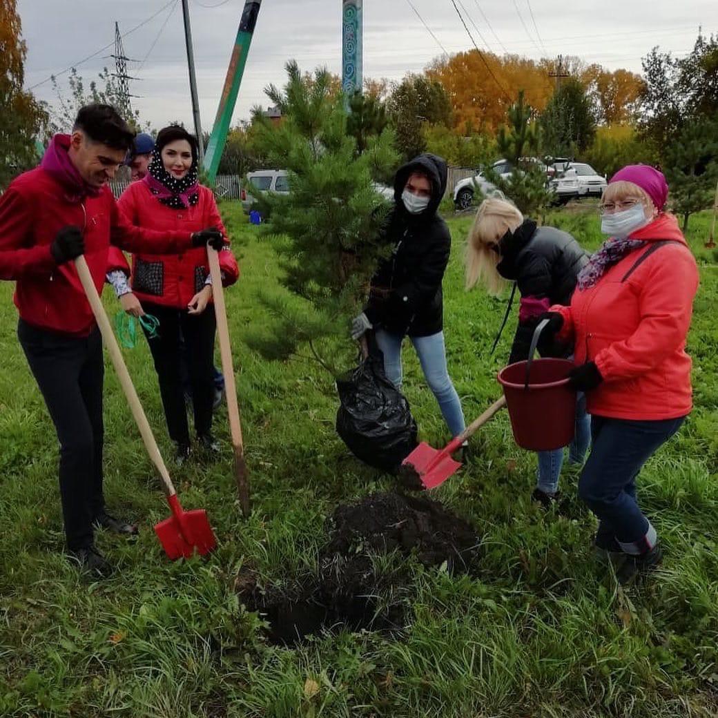 В Прокопьевске высадили больше тысячи деревьев