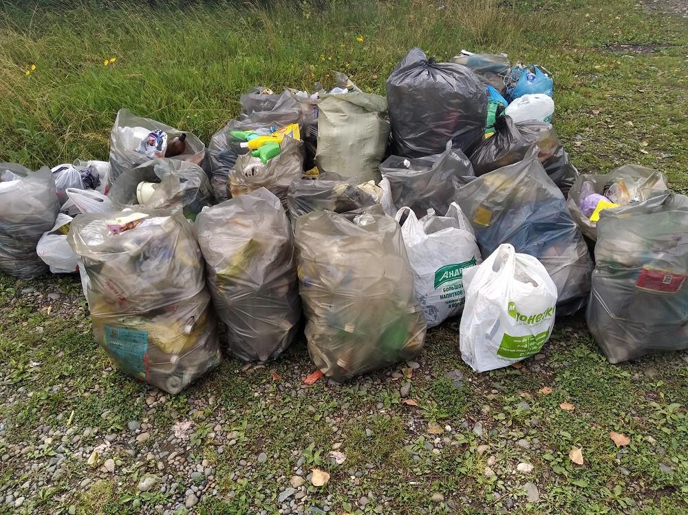 Как поможет сэкономить сортировка отходов на субботнике?