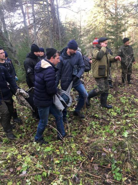 В Кузбассе пропавшая без вести школьница найдена в лесу