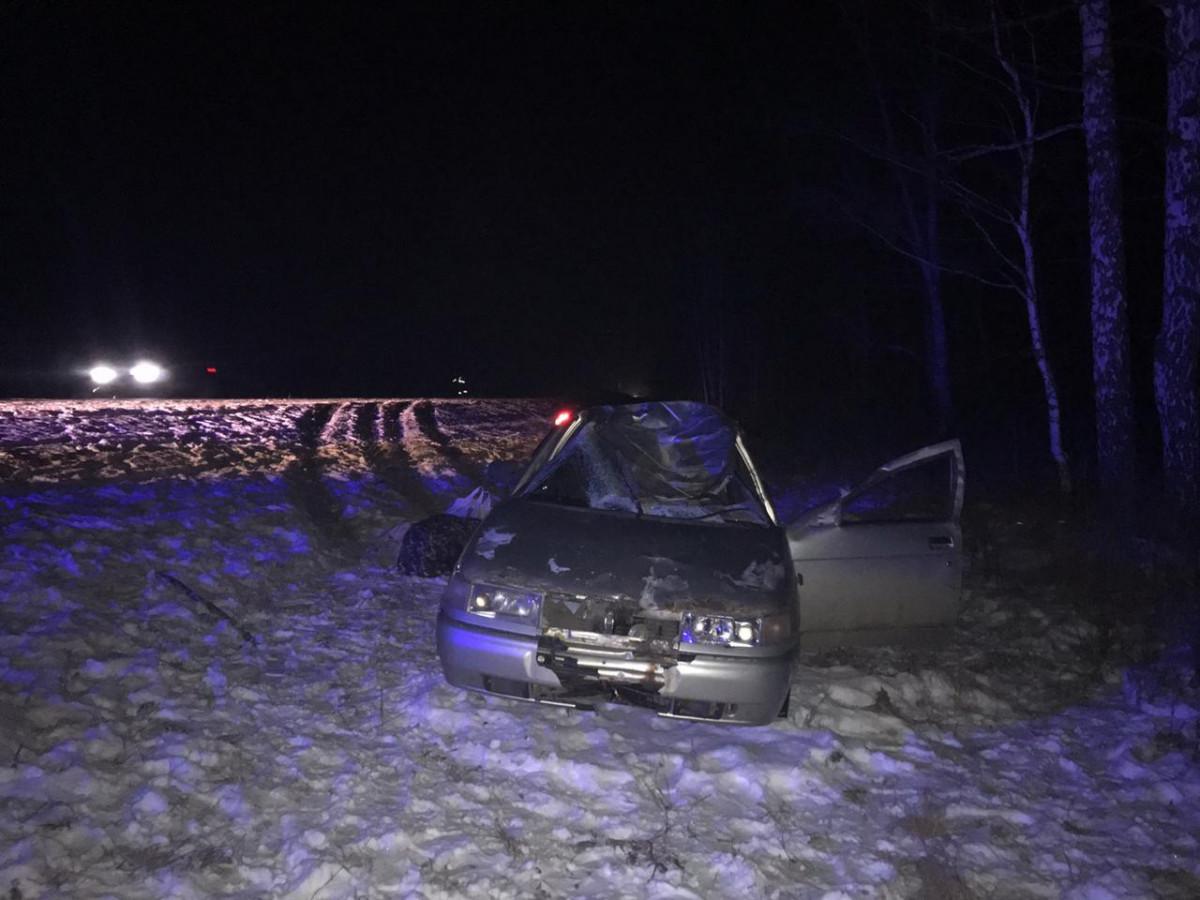 На трассе Кузбасса автолюбитель сбил таежного зверя: пострадали 2 человека