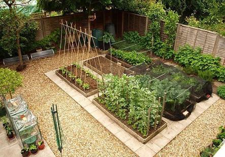 Сад на заднем дворе дома или участка