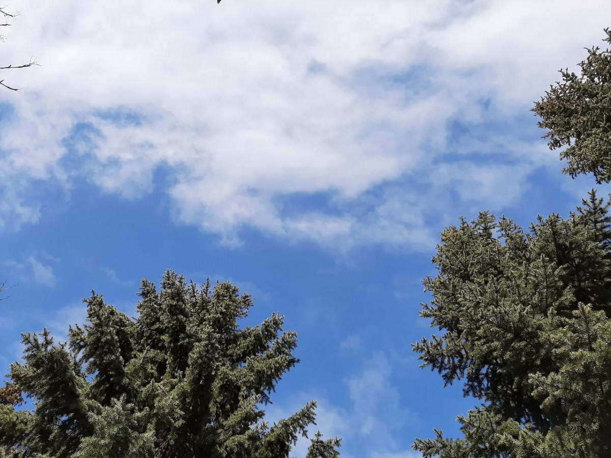 Синоптики: местами ожидается порывистый ветер, дожди и грозы