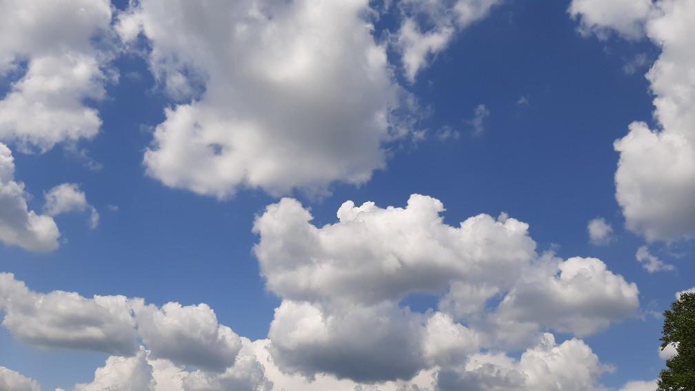 Синоптики: ожидаются дожди, грозы и сильный ветер