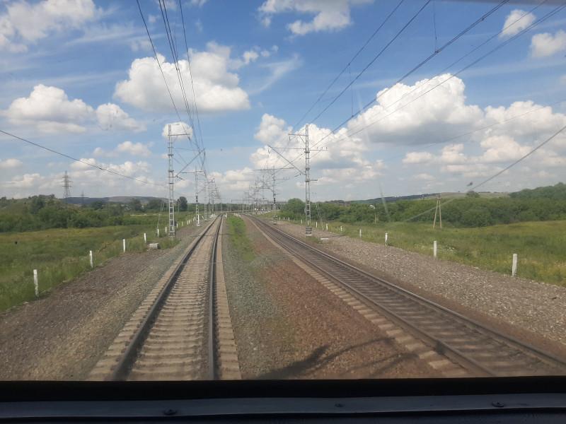 В Кузбассе грузовой поезд сбил трех лошадей