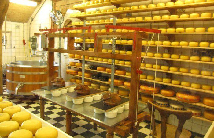 В Кузбассе предлагают вместо разрезов открывать сыроварни и пасеки