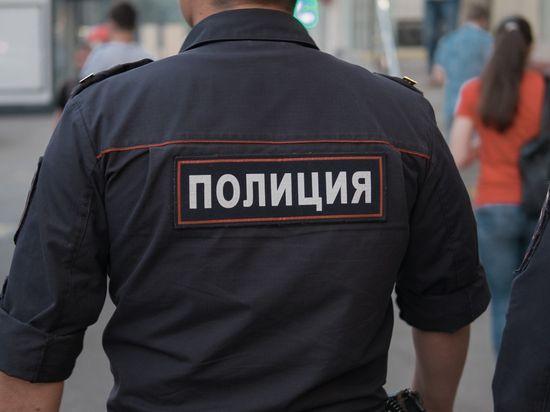 Названы самые распространенные виды преступлений в России за 2017 год
