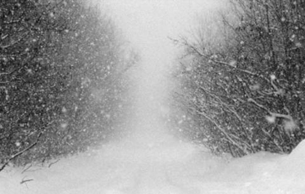 Кузбассовцев предупреждают оштормовом ветре иснежной буре