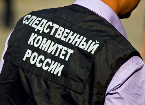 Жительница Кузбасса осуждена за причинении тяжкого вреда здоровью малолетнему сыну, повлекшего его смерть