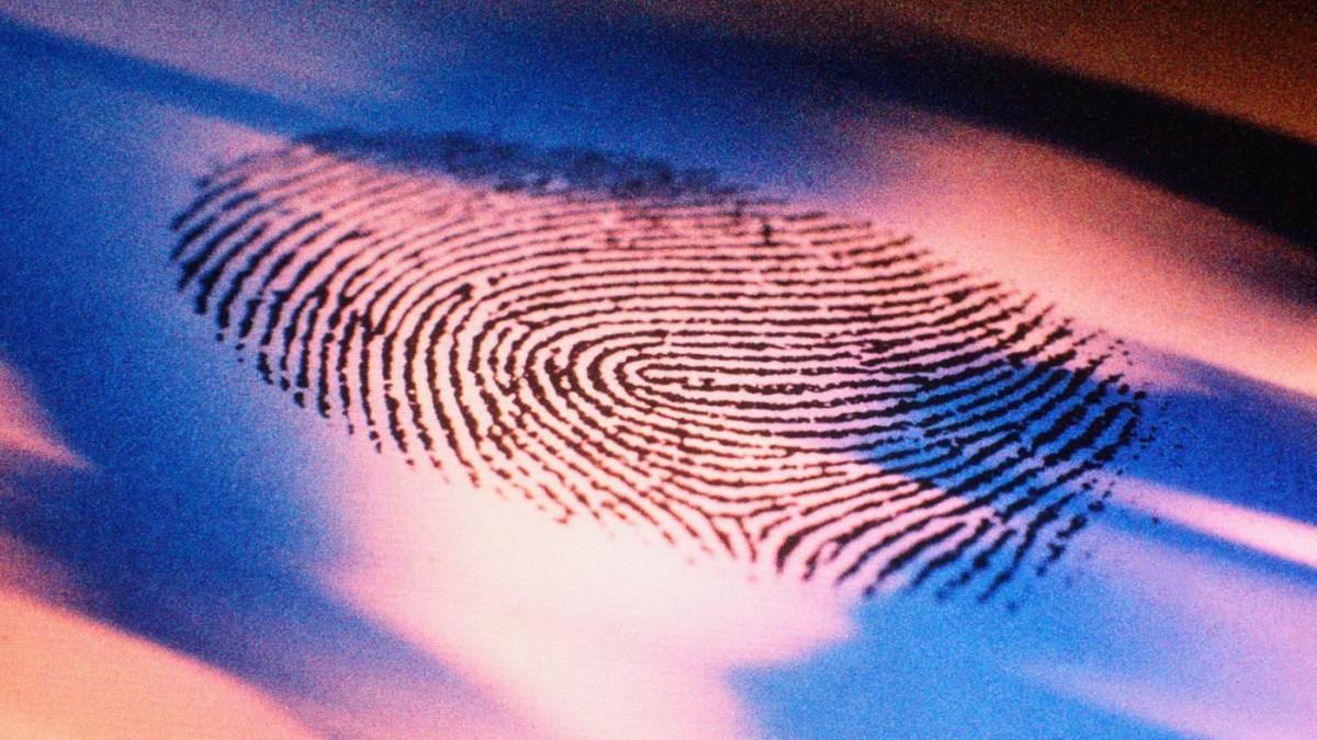 Полиция Прокопьевска раскрыла квартирную кражу по отпечатку пальца