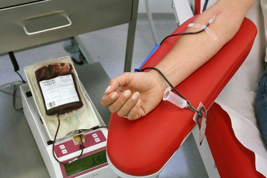 """За сутки в областной Центр крови обратилось более 400 желающих сдать кровь пострадавшим на пожаре в ТРЦ """"Зимняя вишня"""""""