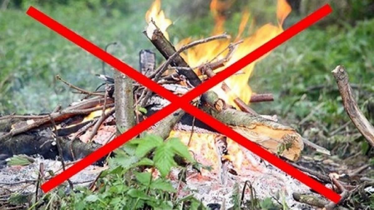 В Кузбассе с 15 апреля вводится особый противопожарный режим
