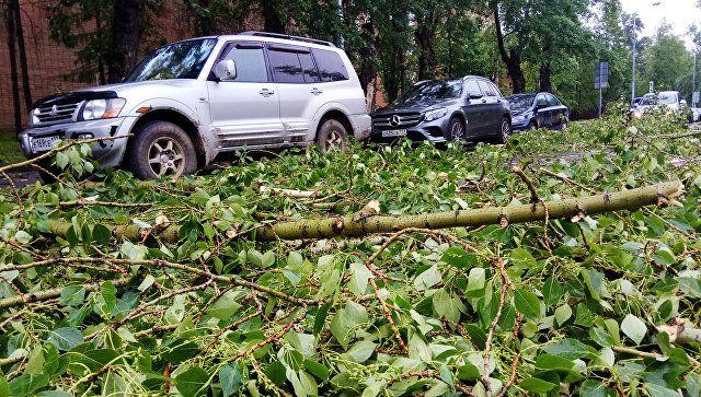 На Москву обрушился ураган: погиб ребенок