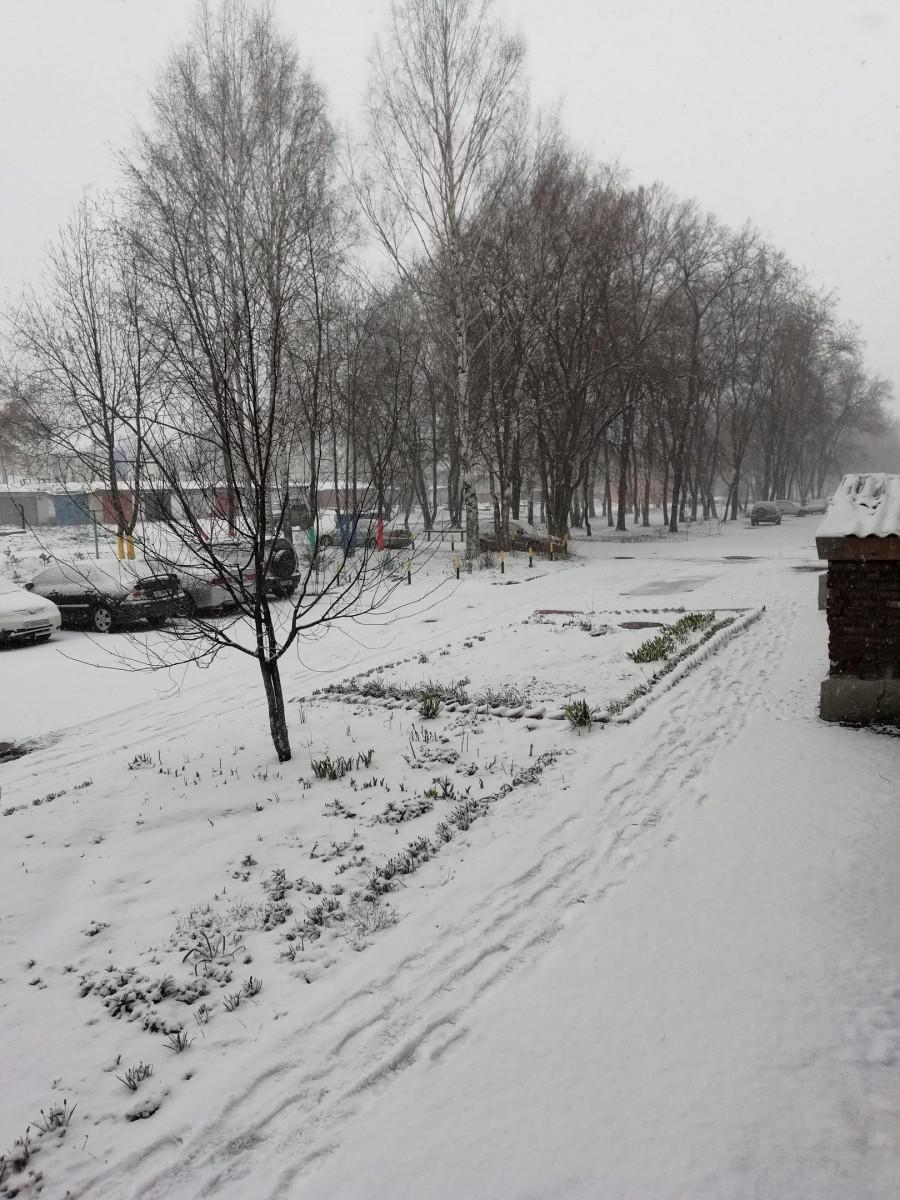 Снег и фонтан: погода в мае впечатлила прокопчан