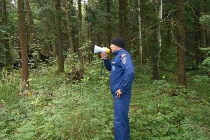 Два кузбассовца пошли в лес за колбой и не смогли найти дорогу домой
