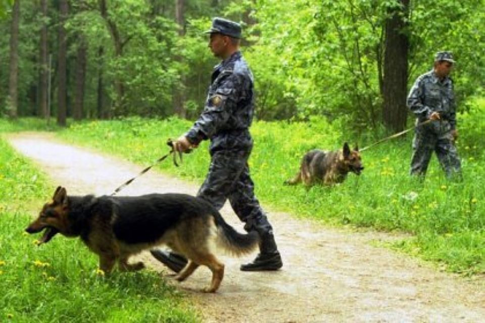 В Кузбассе подросток заблудился в лесу, его нашли через 2 суток