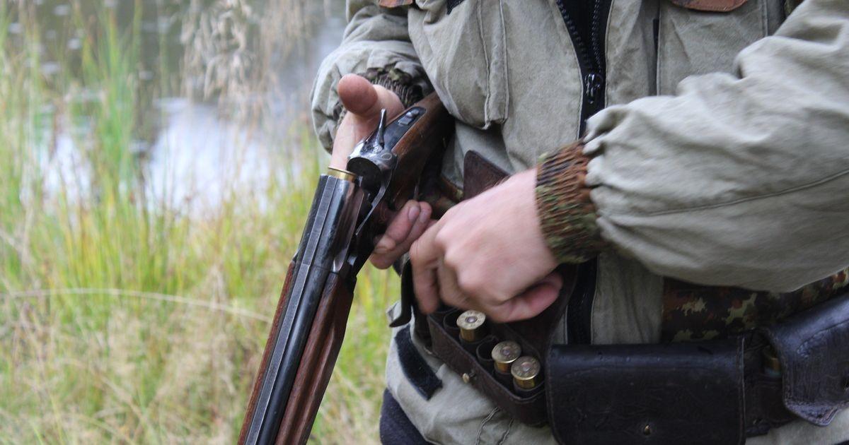 В Кузбассе осужден браконьер, застреливший лося