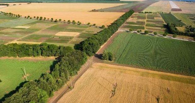 В Кузбассе перевод земель из одной категории в другую будут жестко контролировать