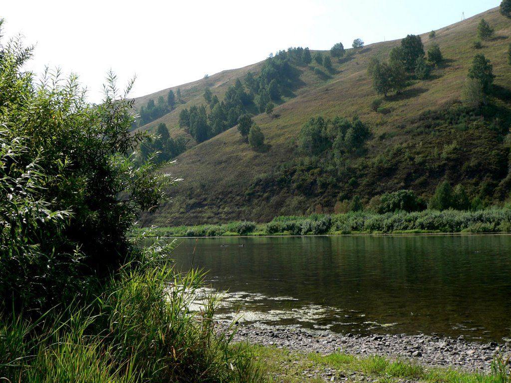 В реке Кузбасса обнаружены опасные бактерии и марганец