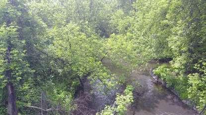 Экологи обследовали русло реки Аба в Прокопьевске и Прокопьевском районе