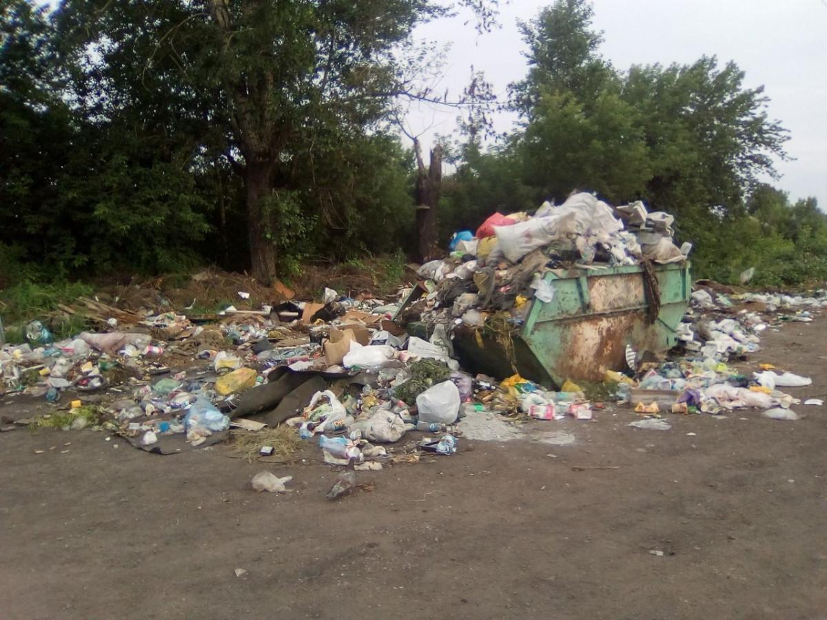 Прокопьевск зарастает мусором (фото)