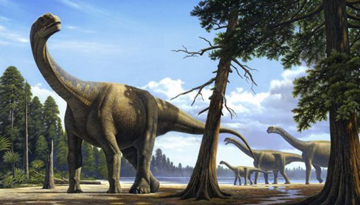В Кузбассе нашли позвонок гигантского ящера