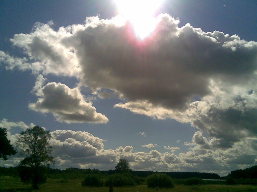Синоптики рассказали, какой будет погода в начале августа