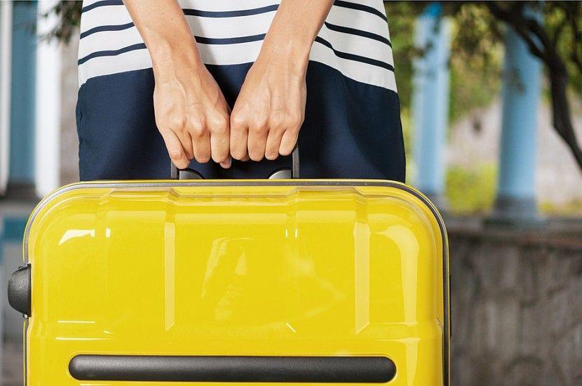 """Минтранс предлагает дамские сумки и портфели вывести из понятия """"ручная кладь"""""""