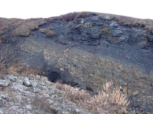 В Кузбассе угольный участок выставлен на тендер за 620 млн рублей