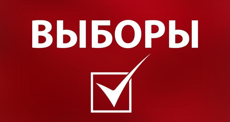Выборы в Кузбассе признаны состоявшимися