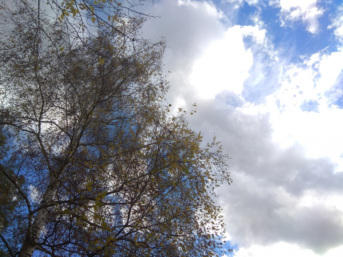 Синоптики: в Кузбасс идет похолодание