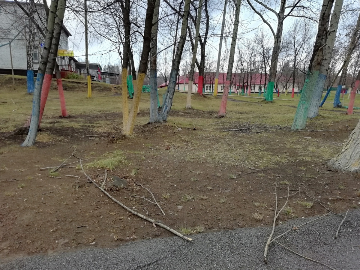 Ураганный ветер обрушился на Кузбасс: что будет дальше с погодой