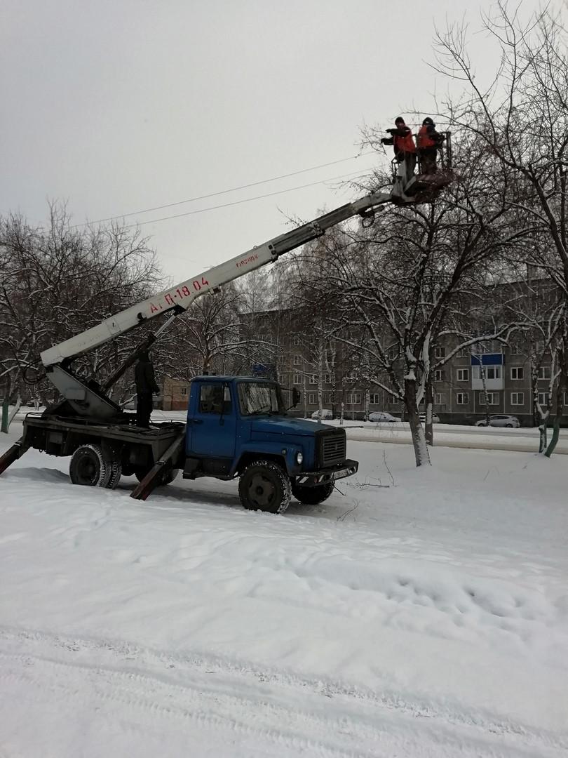 В Прокопьевске рабочие убрали опасные ветки с деревьев на пр.Ленина