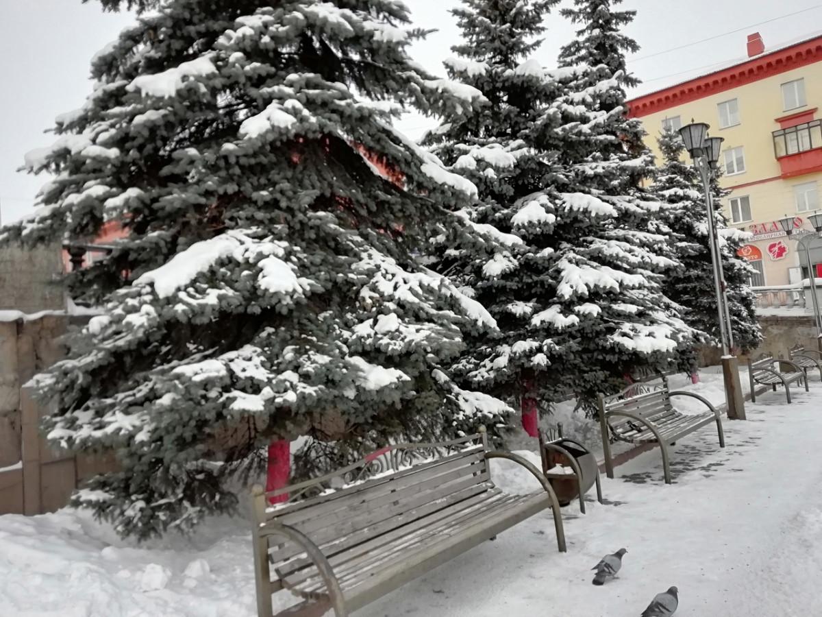 Синоптики: в Кузбассе местами ожидается плюсовая температура