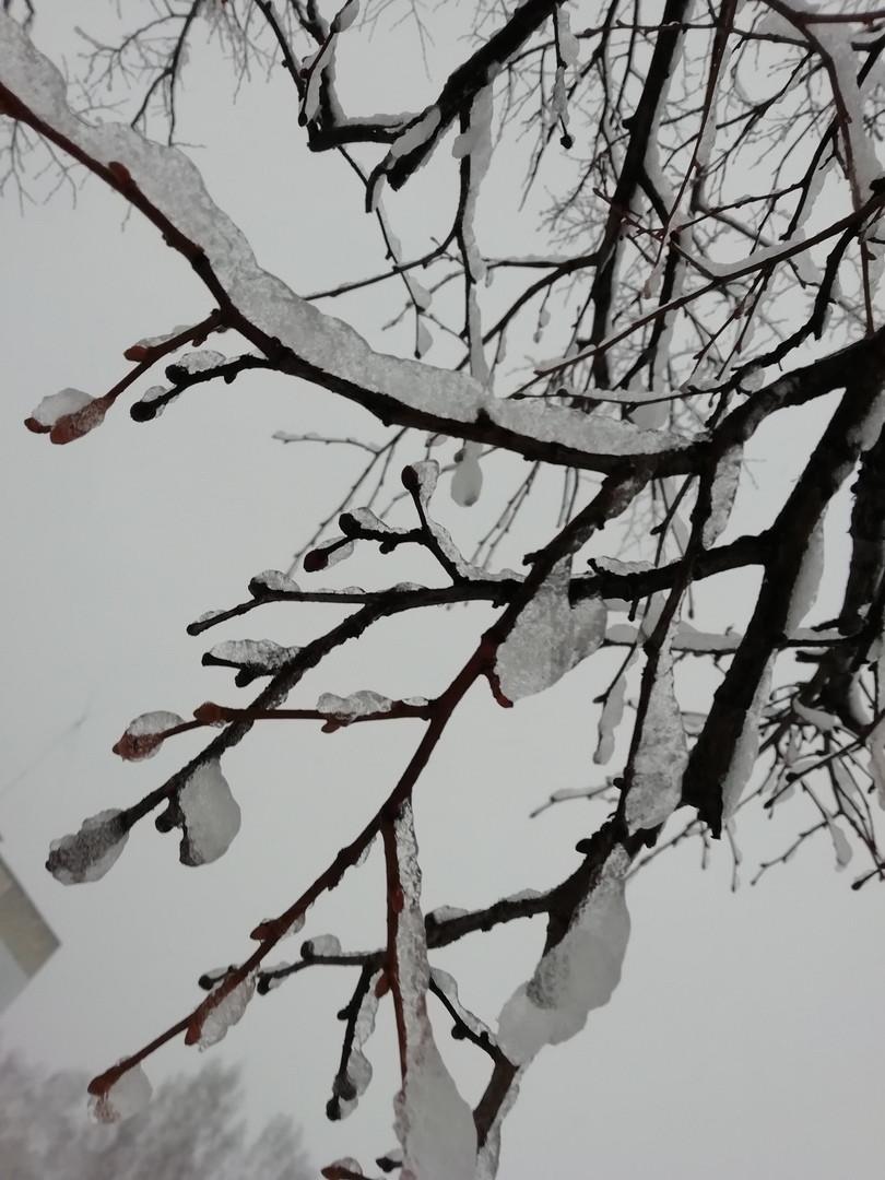 Синоптики о погоде на завтра